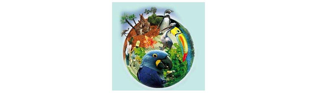 Sortie parc des oiseaux le 9 juin